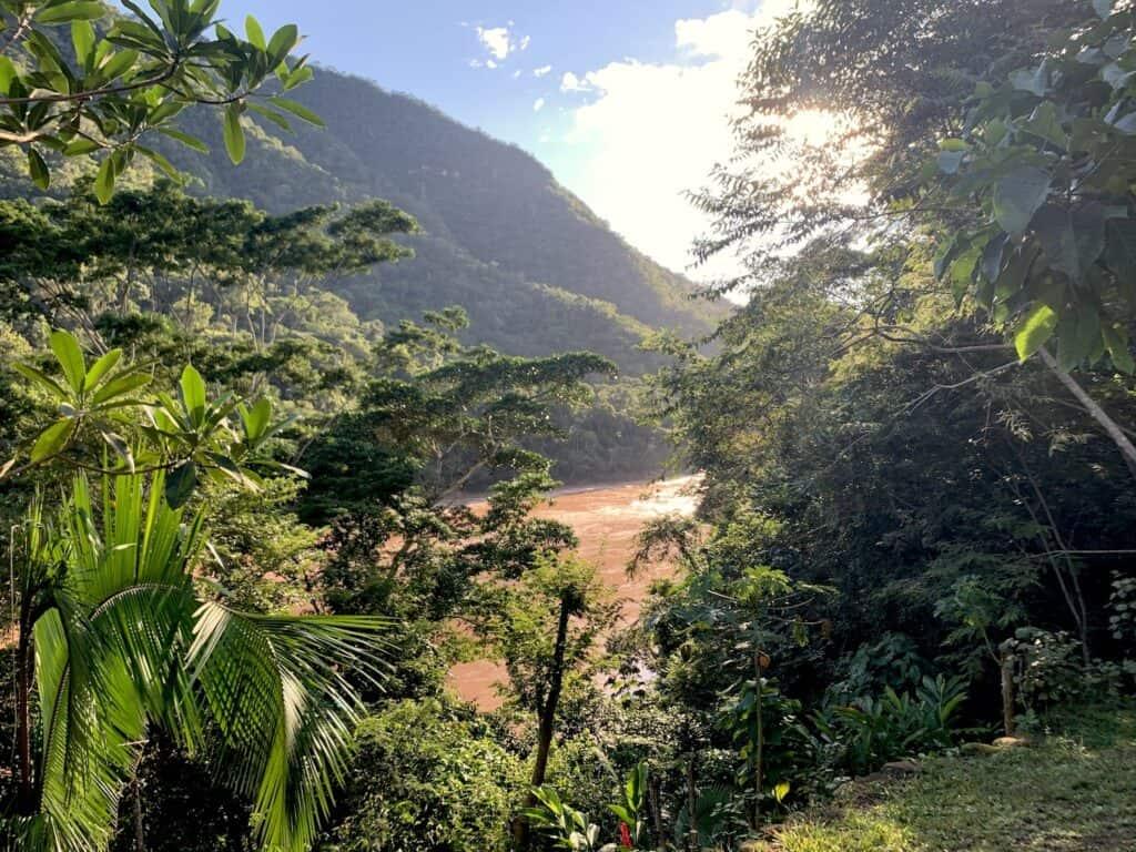cacao Huallaga Pérou