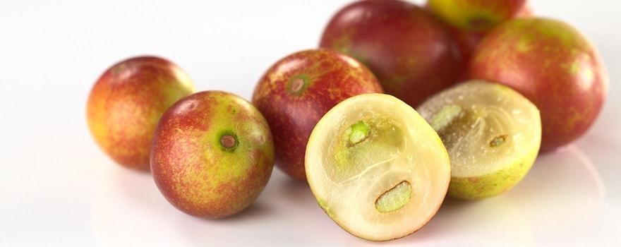 fruit antioxydant