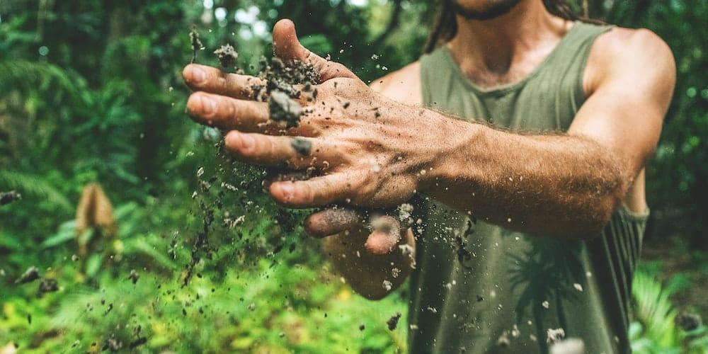 Impact de l'alimentation sur l'environnement, le social et la santé : une app pour mieux consommer