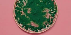 chlorella spiruline
