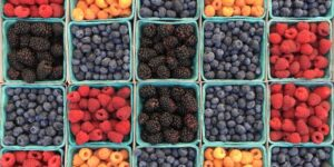 fruis et légumes valeur nutritionnelle