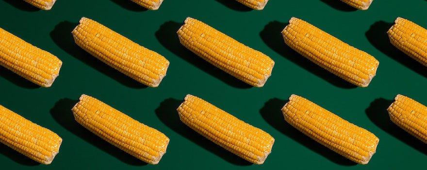 quels sont les aliments naturellement sans gluten